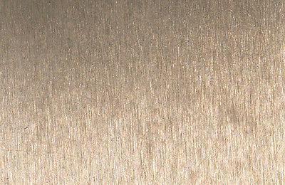 Hansgrohe Interactiv head Sprays 06686820 Nickel